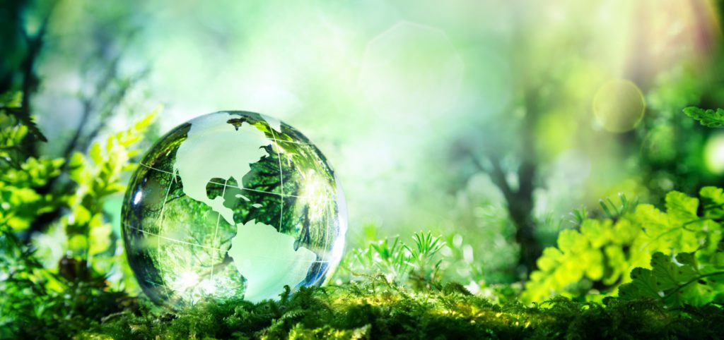 Klimaatavond: duurzaam ondernemen in de IT sector